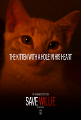 Willie-Woo, the Kitten with a Hole in His Heart